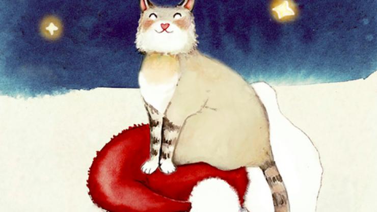 Santa's Cat: Irish author and illustrator team up for children this Christmas