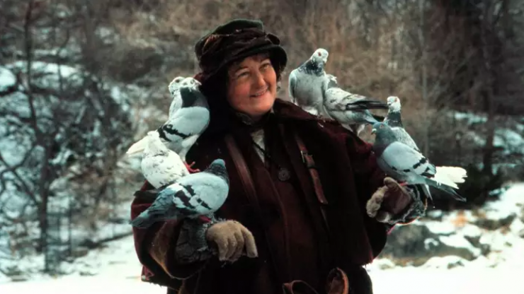 """""""The pigeon lady was very much on her own:"""" Brenda Fricker will be spending Christmas alone"""