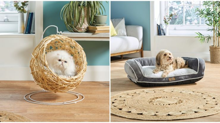 How paw-fect! Check out these eco-friendly pet buys that are coming to Aldi