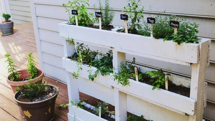 Weekend DIY: Grow your own food with this easy pallet herb garden