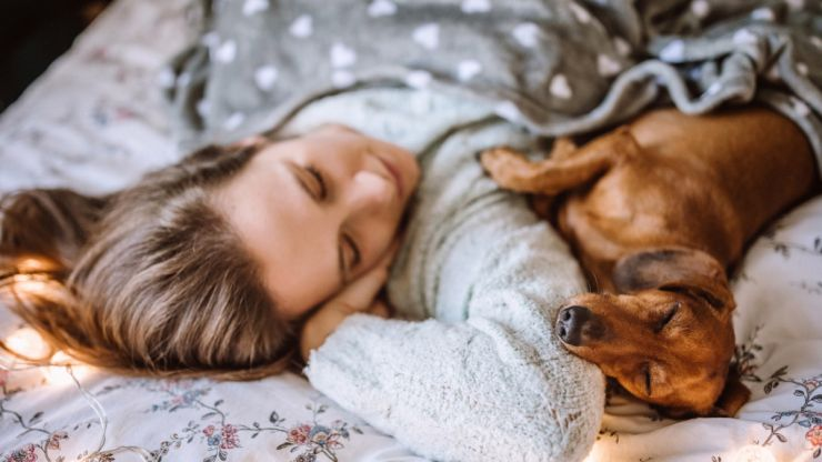 Women sleep better with a dog in their bed than a man, science says