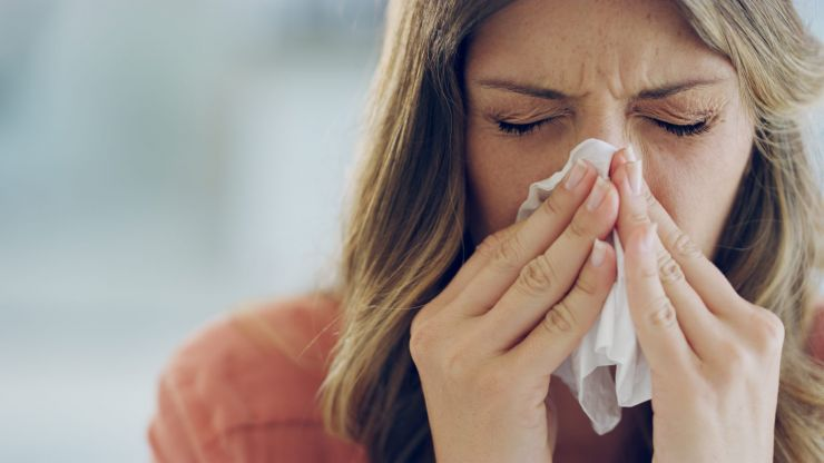 Hay fever season is coming, so here are the symptoms and ways to treat it