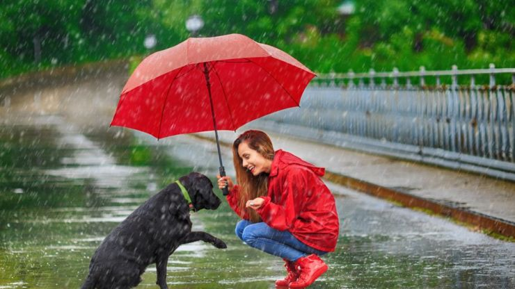 Heavy rain and unsettled conditions forecast for Bank Holiday weekend