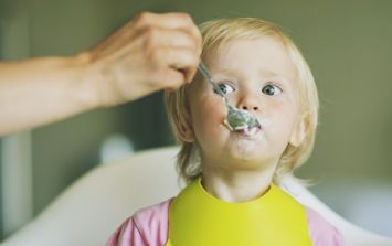 75% of Irish parents are concerned about their toddler's nutrition