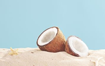 Go (Coco) Nuts: Three new ways to eat the prized fruit of the palm tree