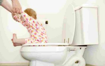 Check out this totally essential, not at all ridiculous, piece of potty-training kit