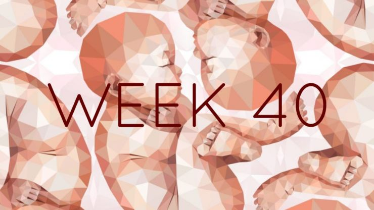 Pregnancy: Week 40