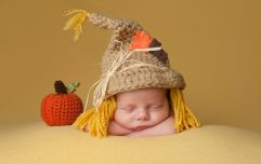 5 Halloween costumes you need to put on your baby right now
