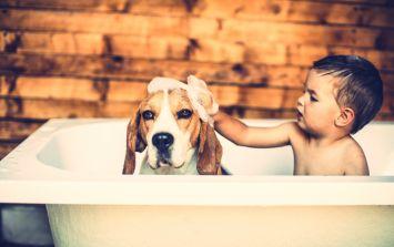 Splish splash: Why we bathe our kids almost every night