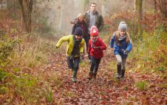Three of the nicest walks in Cork to wrap up and take the kids on