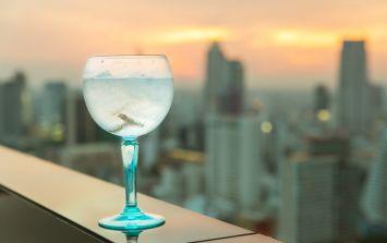 Gintern Wanted! Wanna Earn £20K A Year To Travel Europe Drinking Gin?