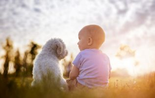 Owning a dog during pregnancy could make your baby a lot healthier