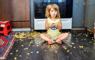 7 things every mum of a hungry, hungry toddler knows to be true
