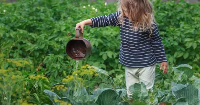 6 lessons I learned about life from gardening with my children