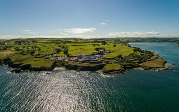 The best little beach hotel in West Cork (and it's dog-friendly)