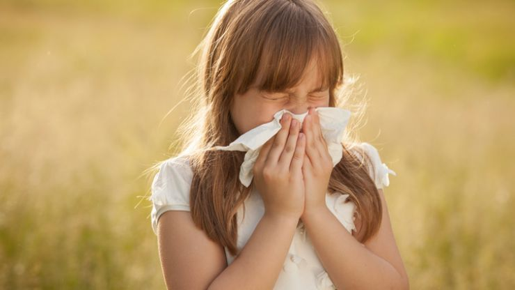 FINALLY! There's some good news on the way for hay fever sufferers