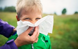 Could a tiny red light be the solution to your hay fever problems?