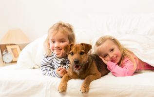 Co-sleeping with your kids (and pets) has its benefits