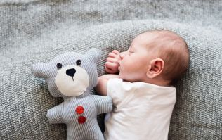 This mum wants to hand-wash her baby's teddies after every visitor