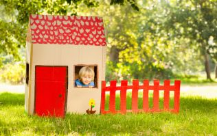 Dublin dad shocked after finding this spider in his kids' playhouse