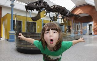 Zoorassic Park is finally at Dublin Zoo and it looks spectacular