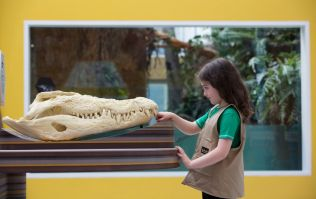 Want to visit Zoorassic World? We have an annual Dublin Zoo family pass to give away!