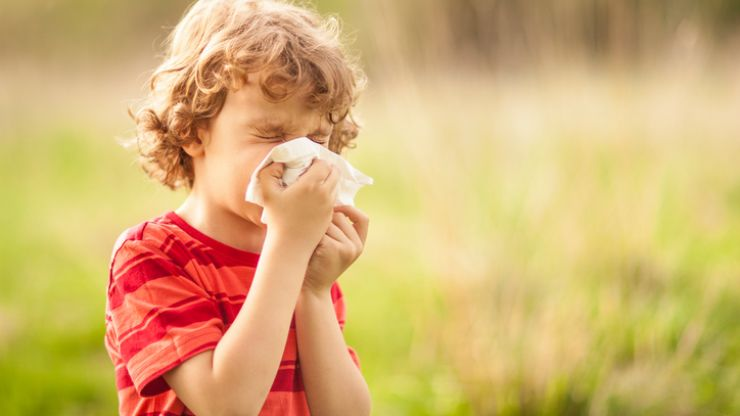 The common bathroom essential that can help prevent hay fever