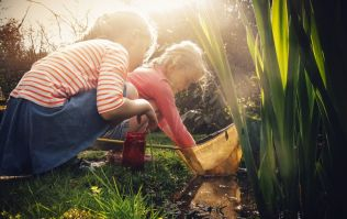 Your summer cheat sheet is here: 5 fun kids' events to check out this week