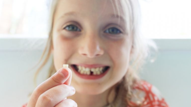 Scientists are urging parents to keep their children's baby teeth and this is why