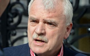 Junior Health Minister Finian McGrath wants the HPV vaccine banned