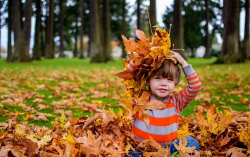 This is why you should never let your children jump in piles of leaves