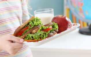 Nutritionists have revealed plans for healthy lunches for Irish school children