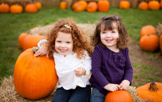 This pumpkin patch event in Meath next month sounds absolutely amazing