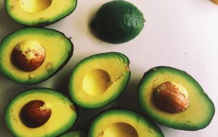 Stop the lights! You can now get 'diet' avocados