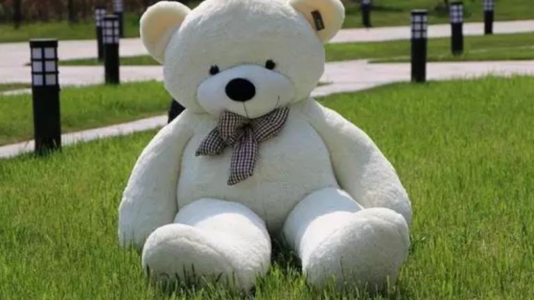This giant cuddly teddy bear has one MAJOR flaw