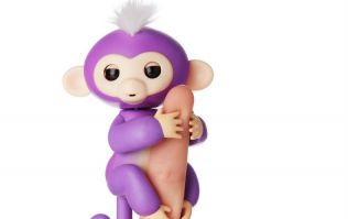 PANIC! Fingerlings are being sold on eBay for 40 times the original price