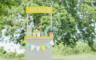 11-year-old girl starts lemonade fundraiser to try and save her mum's life