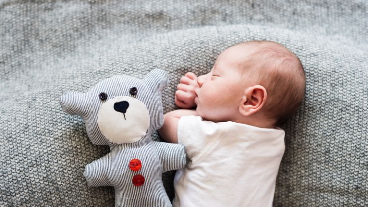 This is how to properly wash your child's teddies and soft toys