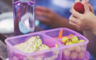 Back to school: Here is why you should seriously rethink those plastic lunchboxes