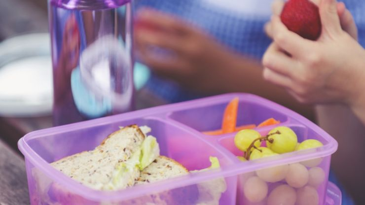 Pediatricians raise alarm about additives in food and use of plastic food containers