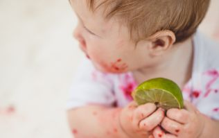 Baby lead weaning: 100 baby led weaning finger food ideas