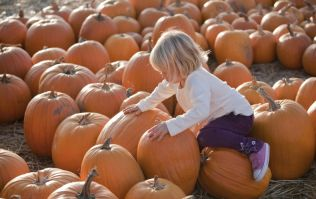 13 really lovely autumn traditions to start doing with your family this year