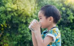 Japanese children are the healthiest in the world – and here is what they are doing differently