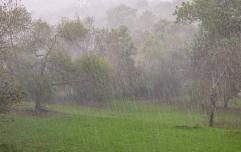 Met Éireann issues Orange weather warning for 13 counties