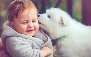 10 of the purest things in life to remind you that the world isn't all bad