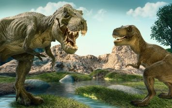 Fancy visiting Jurassic Park? Walking With Dinosaurs is coming to Dublin