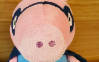 Irish Rail launch appeal to reunite lost stuffed toy with owner