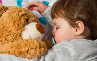 How to wash your child's teddies and soft toys properly