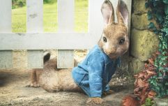 5 reasons we all adored Peter Rabbit growing up (and he's making a BIG return!)
