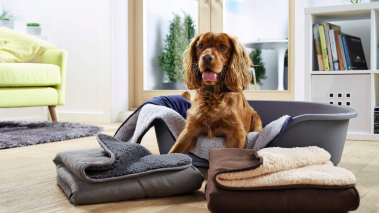 Aldi is doing a massive pet event with some serious deals to spoil your fluffy friend